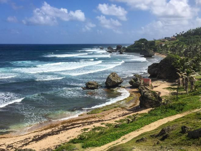 Barbados 2017: Partners and Sponsors